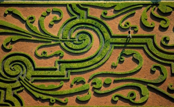 Yann Arthus-Bertrand photo #2